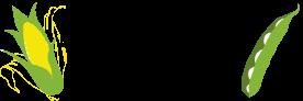 Mason City All Risk Logo